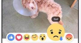 nowe-ikony-facebooka